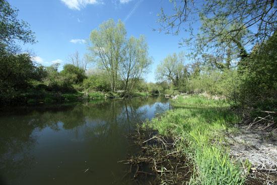 river-colne_-view1_-550px